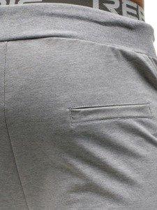 Spodnie męskie dresowe szare Denley W2669